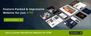 Web design Edmonton | web development Edmonton - Future Workz