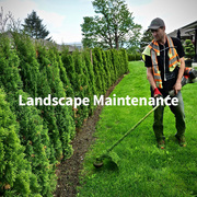 Get Quality Chilliwack Landscape Maintenance