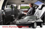 Use the service on a professional limo service rental for a better exp